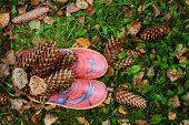 Red Rubber Boots In Wet Grass With Autumn Leaves, Top View. Yellow Foliage And Fir Cones On Green Gr poster
