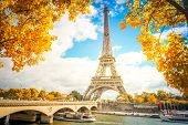 Eiffel Tower And Pont Diena With Yellow Fall Tree, Paris France poster