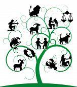 Постер, плакат: Зодиак вихрем дерево