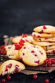 Fresh Homemade Cookies With Red Currants On Dark Background poster