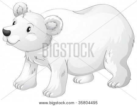 illustration of polar bear on a white background