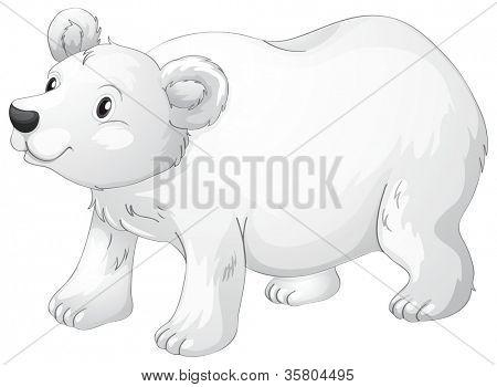 illustration of polar bear on a white background