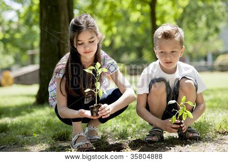 Children planting a new tree. Concept: new life, environmental conservation