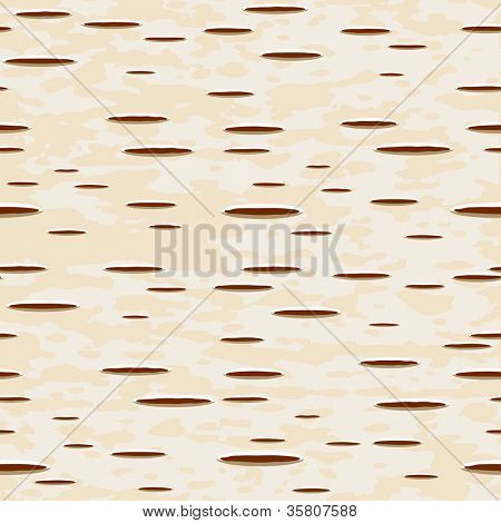 Vector illustration - birch bark seamless pattern