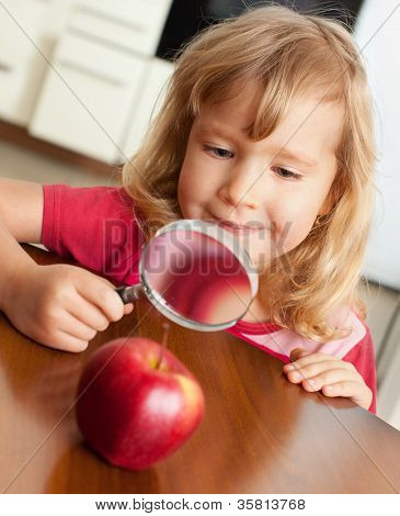 Child are considering a magnifying glass apple
