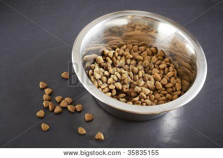 Hund Kibble oder Katzenfutter in Schüssel