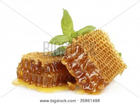 sweet honeycombs with mint, isolated on white