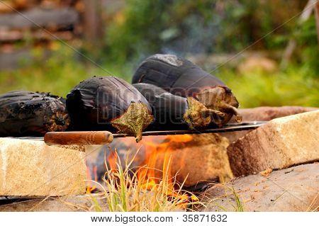 Campfire Barbecue