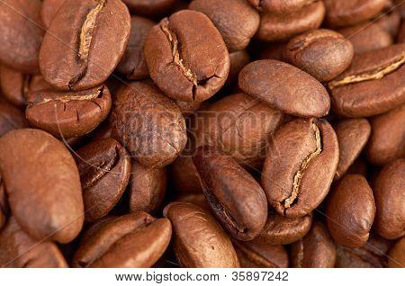 Fress-Kaffeebohnen