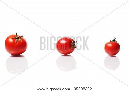Ripe Group Of Tomatoes
