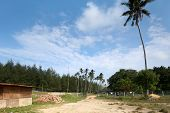 rural scene in a coastal village in Kuantan, Malaysia with a dilapidated hut and coconut plantation. poster