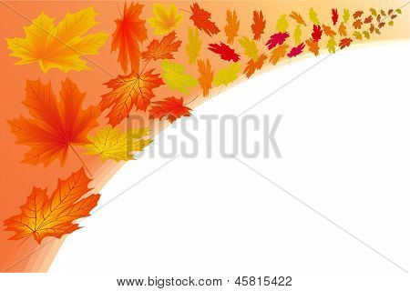 Abstract Frame With Autumn Maple Leaves.