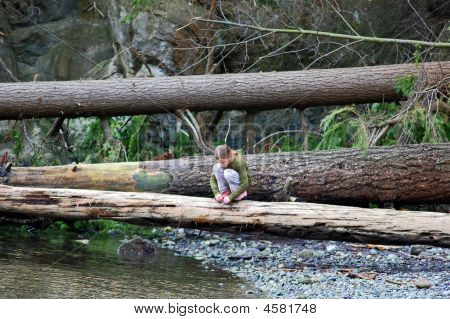 Young Girl Squatting On Log In Forest