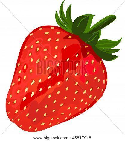 Ripe Red Strawberries.