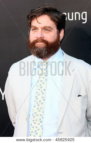 "LOS ANGELES - MAY 20:  Zach Galifianakis at the ""Hangover III"" LA premiere at the Village Theater on May 20, 2013 in Westwood, CA"