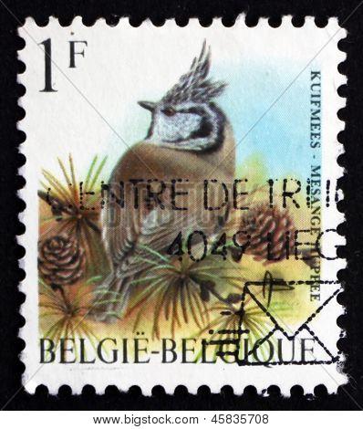 Postage Stamp Belgium 1998 European Crested Tit, Passerine Bird