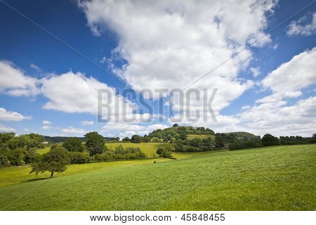 Idyllic Rural Landscape, Cotswolds Uk