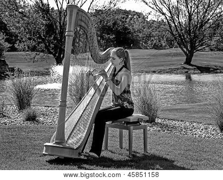 girl playing a harp