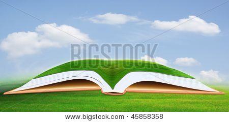 green grass field on open book