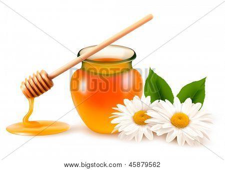 Tarro de miel y una varilla con flor. Versión rasterizada del vector.