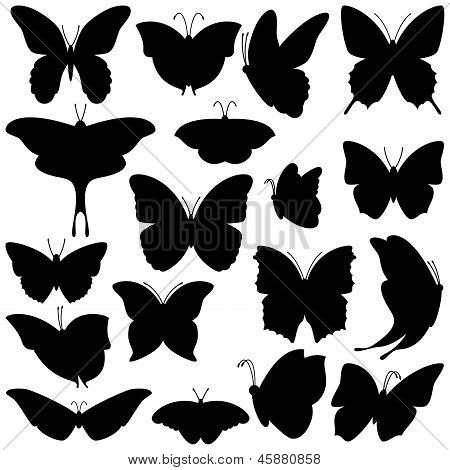 Vector Set of Butterfly Silhouettes