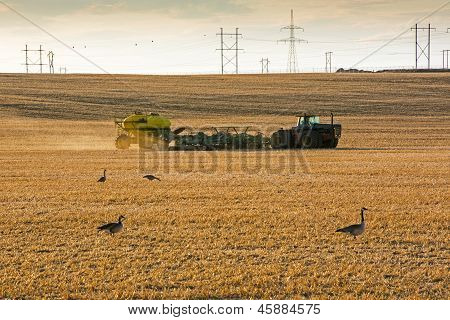 Tractor Seeding In Spring