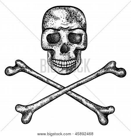 Vector illustration of skull and crossbones.