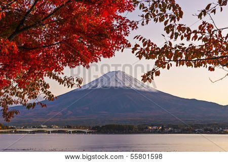 Mt. Fuji with fall Foliage in Japan.