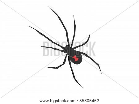 Black Widow Vector