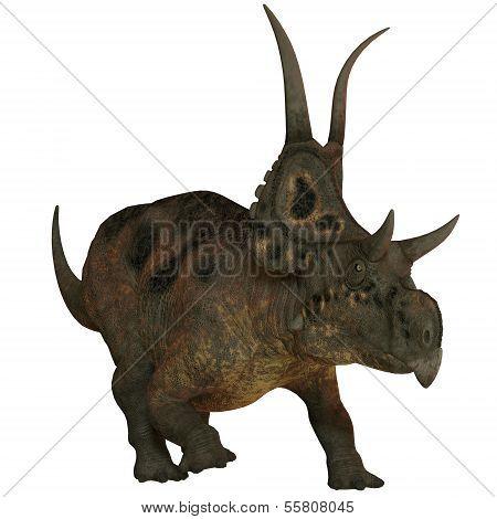 Diabloceratops On White
