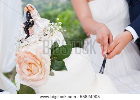 The Wedding Cake Cutting