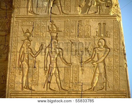 Ancient Hieroglyphics On The Wall Of Kom Ombo Temple
