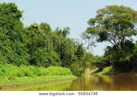 Wild Yacuma River In The Amazon In Bolivia