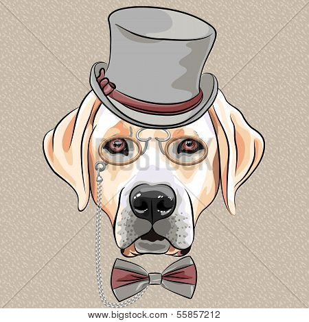 Vector Serious Cartoon Hipster Dog Labrador Retriever Breed