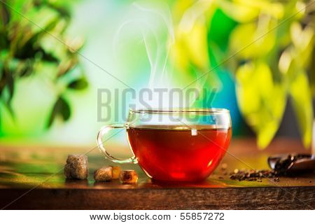 Cup of Healthy Tea over Blurred Nature Green background. Herbal Tea