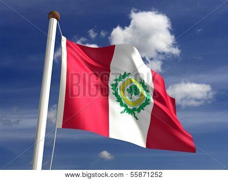 Raleigh City Flag