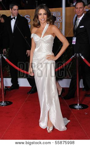 LOS ANGELES - JAN 27:  Sofia Vergara arrives to the SAG Awards 2013  on January 27, 2013 in Los Angeles, CA