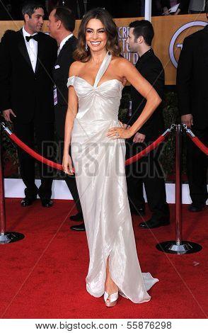 LOS ANGELES - JAN 27:  Sofia Vergara arrives to the SAG Awards 2013  on January 27, 2013 in Los Angeles, CA