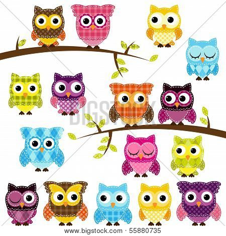 Vector Set of Patchwork Or Quilt Style Owls and Branches