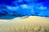 picture of dune  - White sand dunes of Nilgen Nature Reserve - JPG