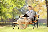 Senior man with hat sitting on a wooden bench and reading a novel, in a park