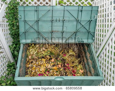 Green plastic compost bin full of organic and domestic food scraps