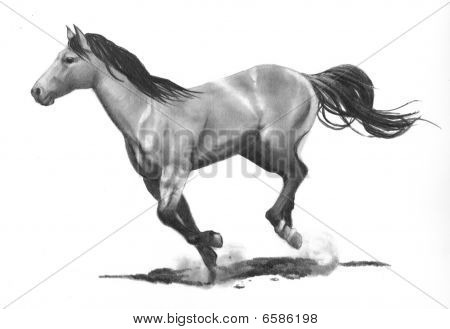 Pencil Drawing of a Horse Running