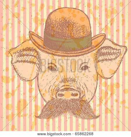 Sketch Pig In Hat With Mustche, Vector  Ackground