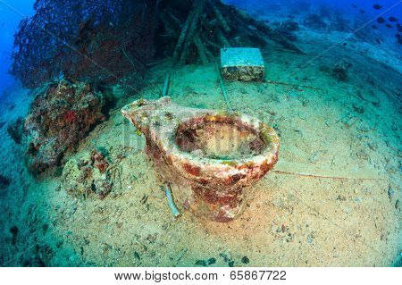 Coral encrusted ceramic toilet underwater