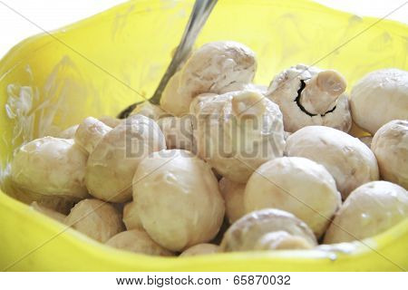 Champignon Mushrooms In Marinade Ready For Cooking