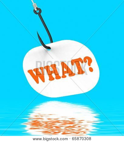 What? On Hook Displays Questions And Answers