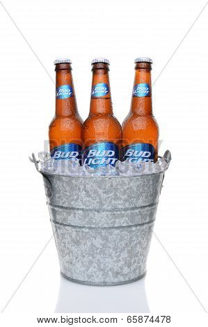 Bud Light Bottles In Ice Bucket