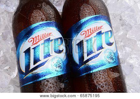 Miller Lite Beer Bottles On Ice
