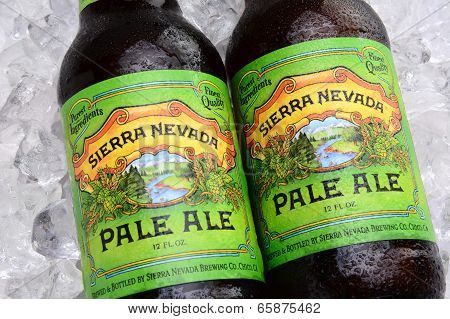 Sierra Nevada Pale Ale Bottles On Ice